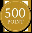 500 Point